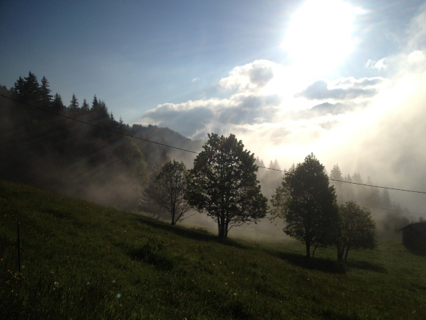 Early morning trail run up towards Mont Chéry in Les Gets