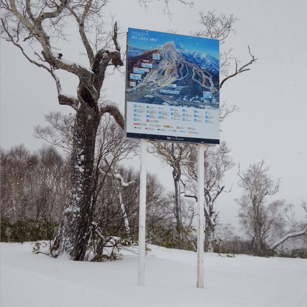 It took me longer than I am proud of to realise why this piste map was so high off the ground. I couldn't read a bloomin' thing and then the penny dropped - wow, they really are expecting a lot of snow!